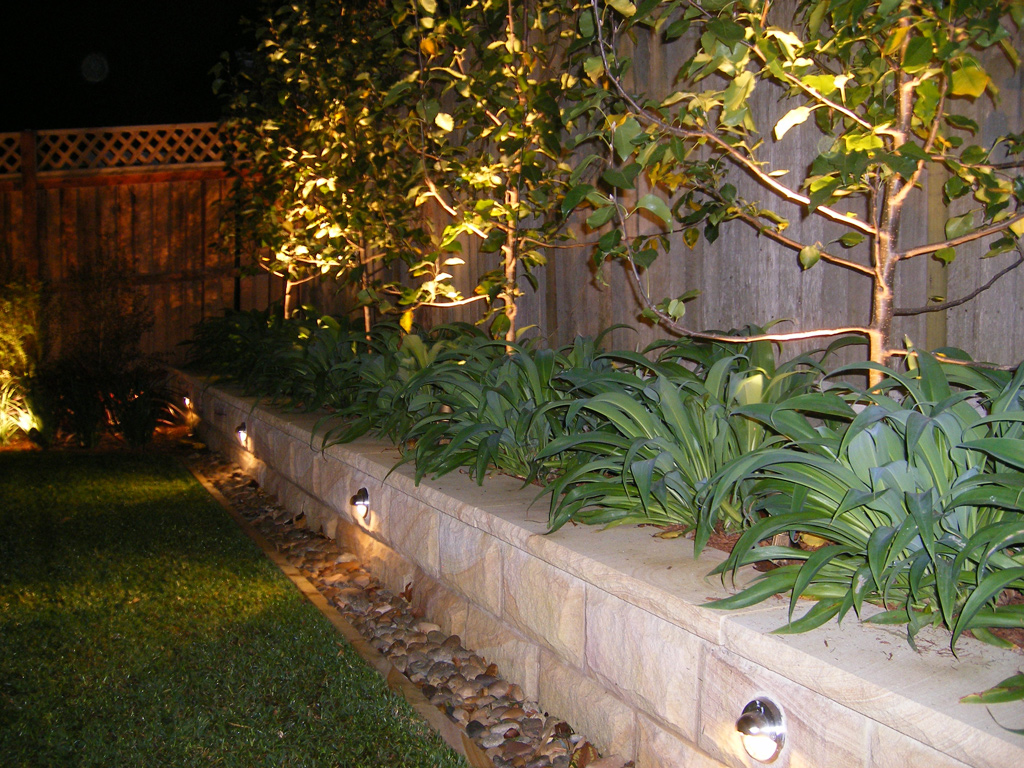lighting sydneys landscapes and gardens