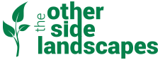 Other Side Logo